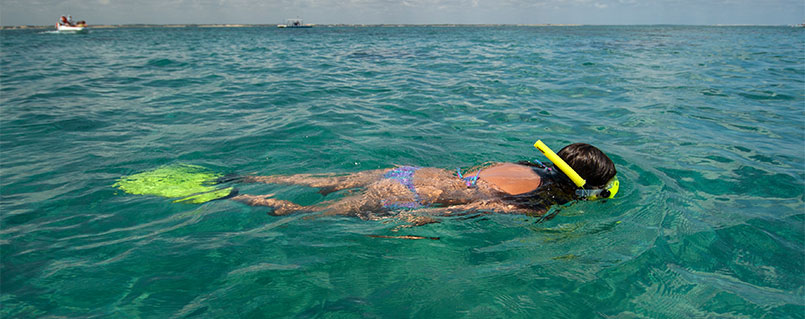 Snorkeling | Maracajaú Diver